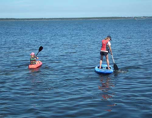 kayaks and sup boards